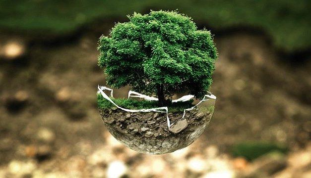Pas de conscience religieuse sans conscience écologique !